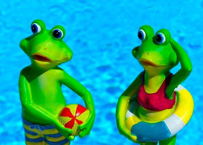 Guía para padres: juega y aprende con tus hijos en vacaciones